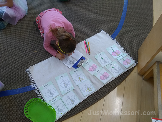An older child is making a parts of the flower booklet, writing out each flower part that is highlighted.