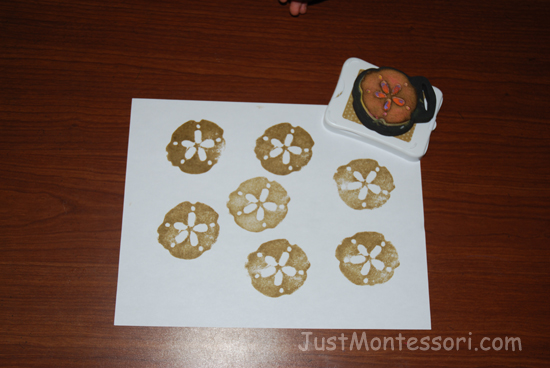 Sand Dollar Prints (can make into necklaces)