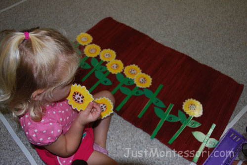 Seed Counting 1-10