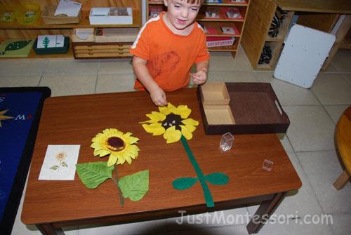 Build a Sunflower with Felt