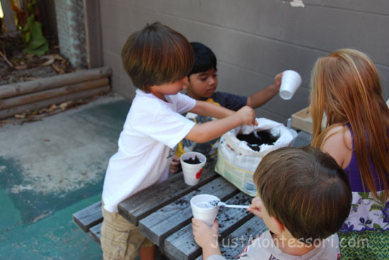 Planting apple seeds after the tasting is a enjoyable for the children. Make or buy little apple shapes to put each child's name on the cups.