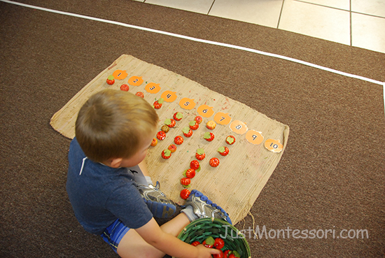 1-10 Mini Pumpkin Counting