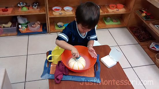 Pumpkin Scrubbing